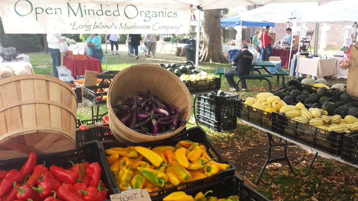 open minded organics east end taste