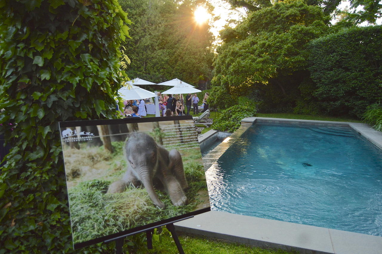 trunks of love veterinarians international kick off reception 2017