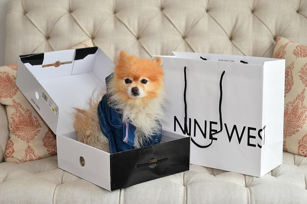 Nine West Crowns by Christy Hamptons Brunch