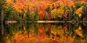 fall activities for whole family