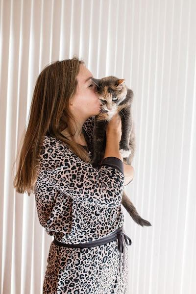 nationwide pet jungle cat sweepstakes vanessa gordon